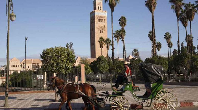 Bộ Công thương khuyến cáo doanh nghiệp Việt không giao dịch với một công ty tại Maroc