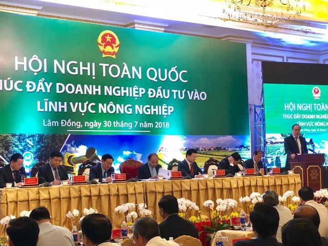 Toàn cảnh hội nghị về thúc đẩy đầu tư vào lĩnh vực nông nghiệp tại Đà Lạt, Lâm Đồng.
