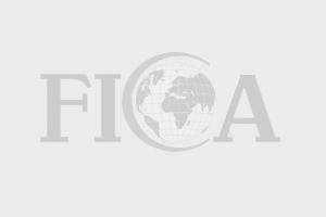 Từ chối cấp phép cho 1.000 xe ô tô Trung Quốc vào Việt Nam