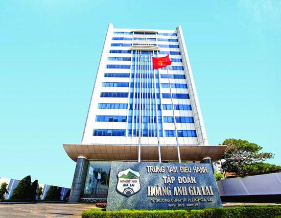 Chỉ có 3 tổ chức là có thể chuyển nhượng 24 triệu cổ phiếu HNG trong 1 lần cho Hoàng Anh Gia Lai