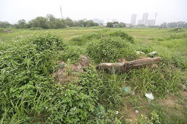 Toàn bộ dự án rộng hơn 35ha do Tổng công ty Xây dựng và Phát triển hạ tầng (Licogi) làm chủ đầu tư đang bị bỏ hoang.