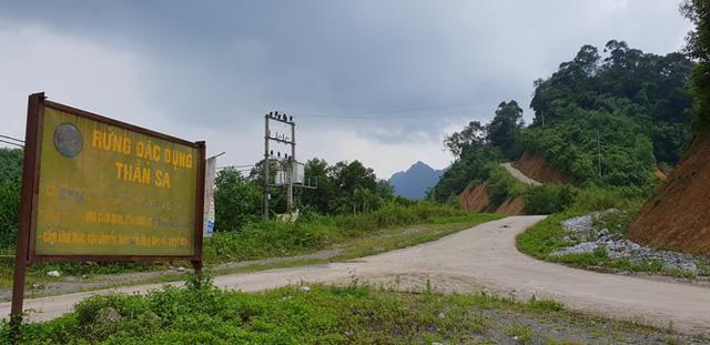 Rừng đặc dụng Thần Sa đang bị xâm hại bởi hoạt động khai thác vàng (Ảnh: V.H).