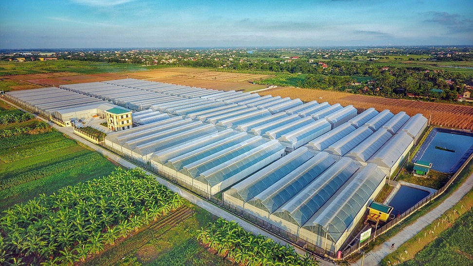 Tập đoàn Nhật bỏ gần trăm tỷ đồng mua 10% cổ phần công ty của đại gia Nguyễn Duy Hưng