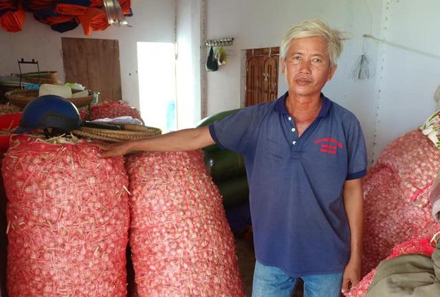 Về lâu dài người dân trồng tỏi ở Khánh Hòa cần một giải pháp căn cơ, đầu ra ổn định hơn