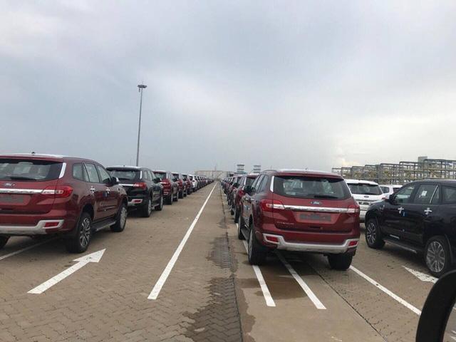 Trong số xe nhập khẩu về TP.HCM, lượng xe con không thuế chiếm gần như tuyệt đối.