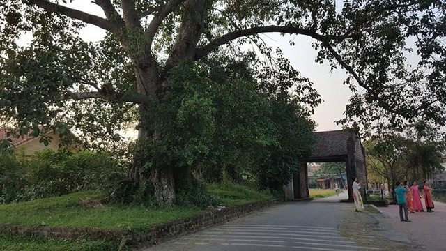 Làng cổ Đường Lâm cách trung tâm Hà Nội khoảng 47 km. Tại đây có nhiều nhà vườn độc đáo được xây dựng bằng đá ong nguyên bản và gỗ có tuổi đời lên đến 300, 400 năm.