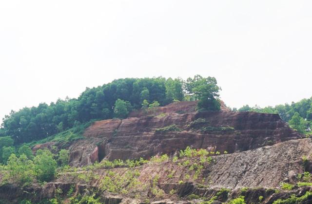 Khu vực đồi Tỷ thuộc bản Khoang (Châu Bình, Quỳ Châu, Nghệ An), nơi được xem là có trữ lượng đá màu, trong đó chủ yếu là ruby, hồng ngọc rất lớn.