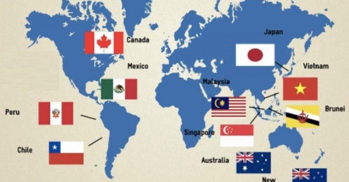 11 nước tham gia CPTPP có quy mô dân số 502,2 triệu người, quy mô GDP chiếm 13,5% GDP toàn cầu, tổng kim ngạch thương mại 10.000 tỷ USD.