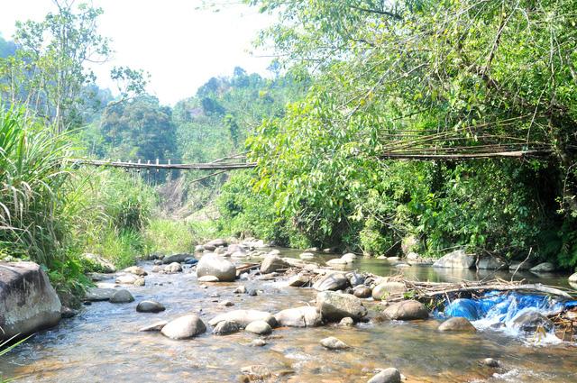Dự án thủy điện Đăk Di 4 thuộc xã Trà Mai, trung tâm huyện Nam Trà My. UBND tỉnh Quảng Nam đã kiên quyết thu hồi dự án thủy điện này vì chủ đầu tư có nhiều sai phạm. Ảnh: Một con suối chảy qua trung tâm huyện Nam Trà My