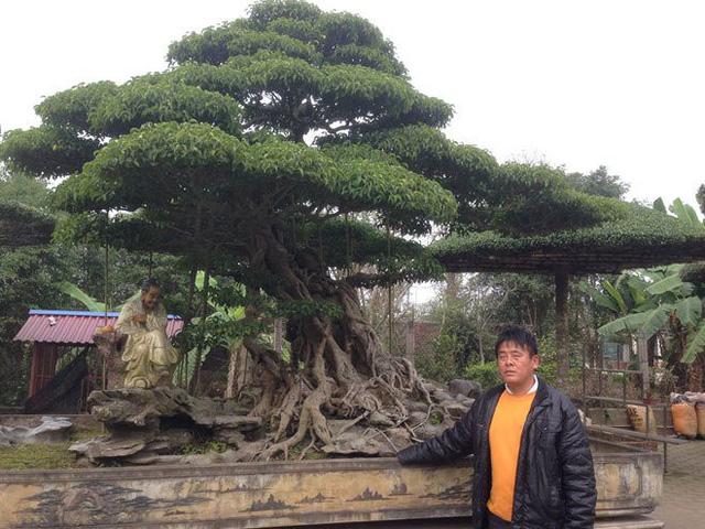 Đại gia cây cảnh Nam Định tiết lộ bí mật khó tin tạo nên 'báu vật' tiền tỷ