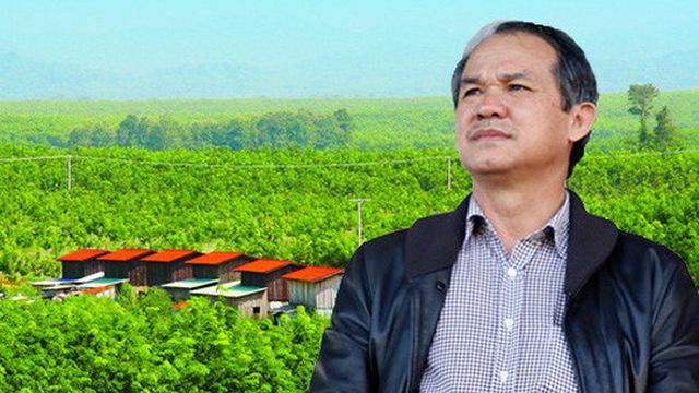 Hưng Thắng Lợi Gia Lai đã sở hữu 10,49% HAGL Agrico