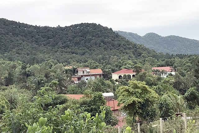 Hà Nội đang thanh tra toàn diện việc sử dụng đất rừng ở xã Minh Phú