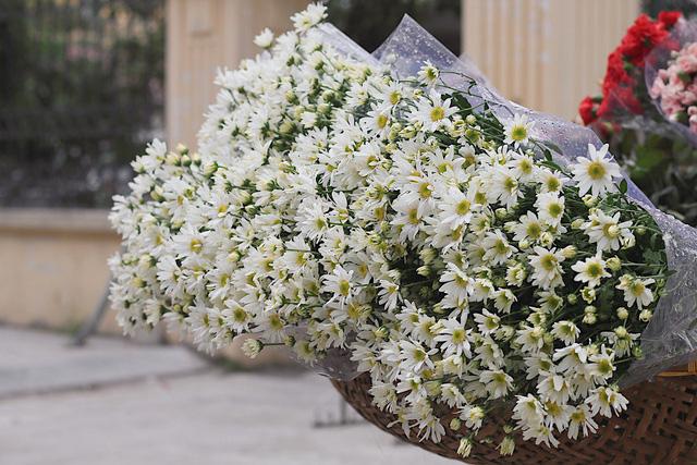 Cúc họa mi chủ yếu được bán ở các gánh hoa rong, ít thấy bán tại các cửa hàng hoa.