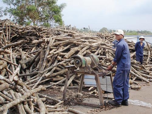 Tạm ngừng nhập khẩu gỗ tròn, gỗ xẻ từ Lào và Campuchia