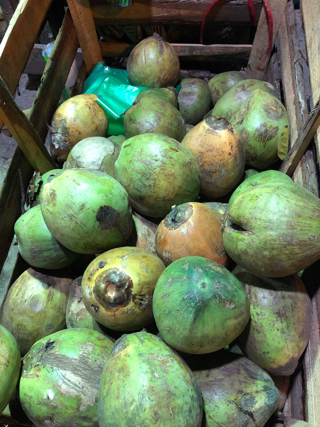 Loại dừa 5.000 đồng/quả được để riêng hầu như đều là những quả đã hỏng hoặc non, không có nước. (Ảnh: Hồng Vân)