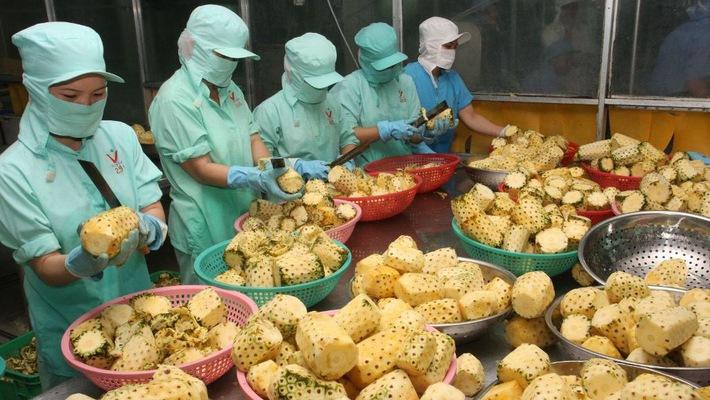 Ham hợp đồng dễ dãi, doanh nghiệp Việt dễ bị lừa khi ký đơn xuất khẩu