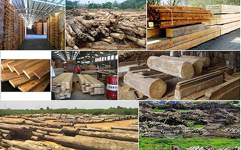 Ngành gỗ có hoàn toàn được lợi từ chiến tranh thương mại?