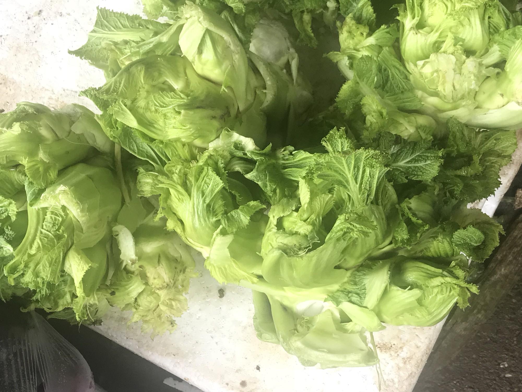Chưa rét đậm rét hại, giá rau củ đã tăng gấp đôi - Ảnh 7.
