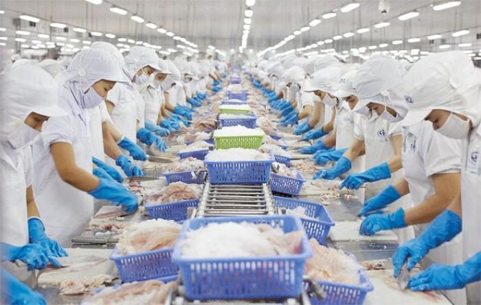 Xuất khẩu thủy sản 6 tháng đầu năm đạt 4 tỷ USD