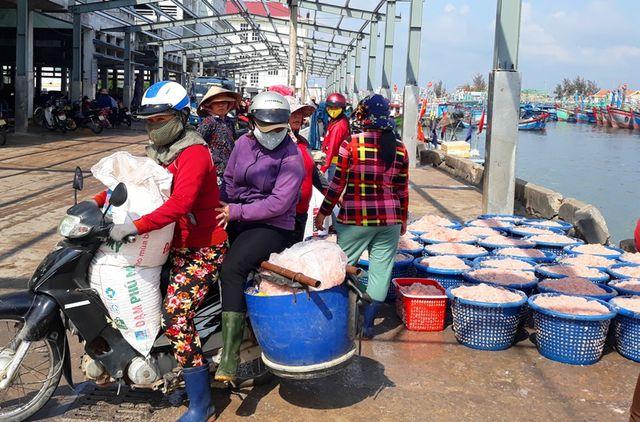 """Ngư dân Bình Định trúng lớn """"lộc biển"""", kiếm tiền triệu chỉ vài giờ - 9"""
