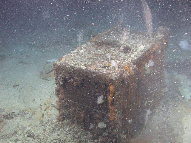 Chiếc hòm đựng 2 túi vải chứa đầy tiền xu nằm dưới đáy biển.