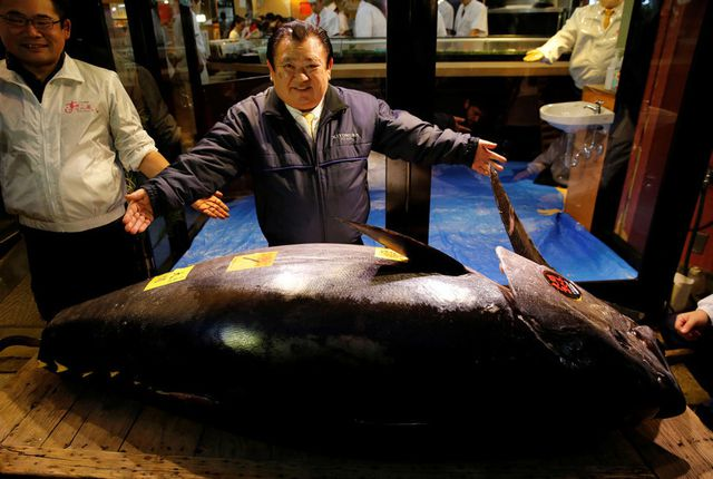 """""""Soi"""" những con cá đắt nhất thế giới, cá ngừ đứng đầu giá 71 tỷ/ con - 8"""