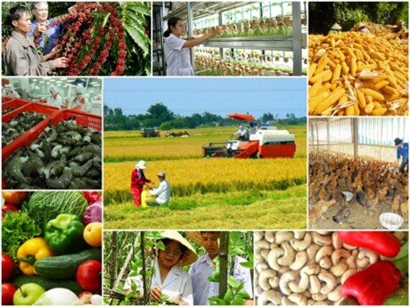 Tăng trưởng ngành nông nghiệp thấp có thể ảnh hưởng tới GDP quý I