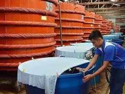 Dừng công bố Dự thảo Tiêu chuẩn nước mắm
