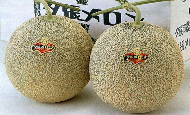 Vì sao người Nhật bỏ 635 triệu đồng mua một cặp dưa lưới, 105 triệu đồng/quả dâu tây? - 1