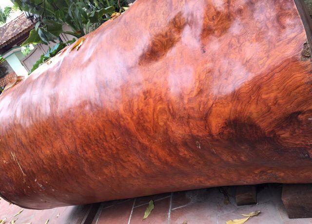 Bí ẩn khúc gỗ dài 3 mét, đại gia Hải Phòng trả giá gần 4 tỷ đồng - 2