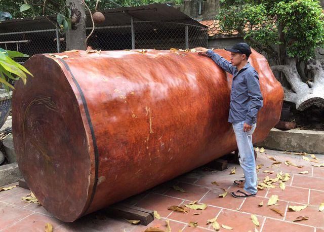 Bí ẩn khúc gỗ dài 3 mét, đại gia Hải Phòng trả giá gần 4 tỷ đồng - 4