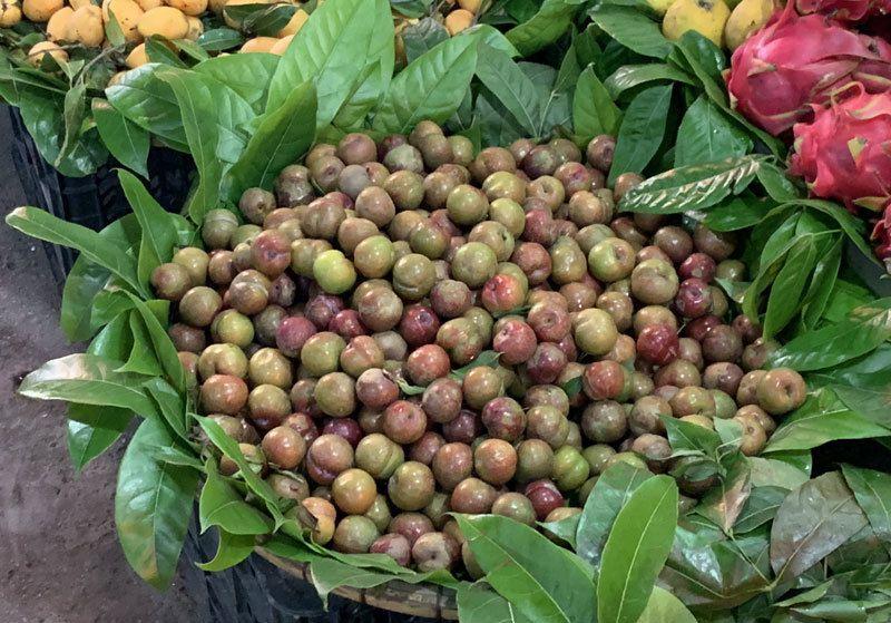 Đắt gấp đôi hàng ngoại, mận Việt chua chát 300 ngàn đồng/kg vẫn cháy hàng