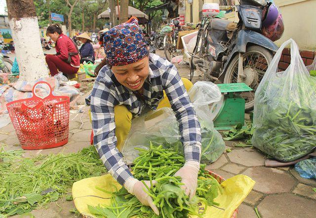 Cặp vợ chồng 20 năm giữa đảo hoang, mỗi ngày 2 tạ rau bí bán khắp Hà Nội - 1