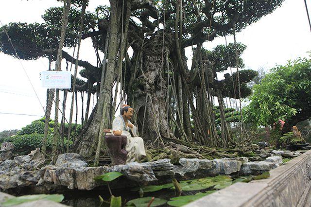 Dành cả thanh xuân tạo tác cây sanh cổ, kết quả thu được khiến ai cũng mê - 8