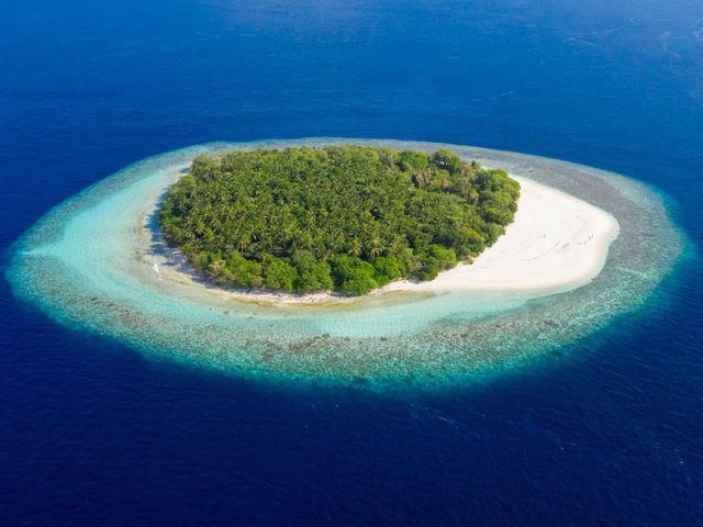 """Triệu phú bỏ trăm ngàn USD để """"hút"""" người chơi trò sinh tồn trên đảo hoang - 1"""