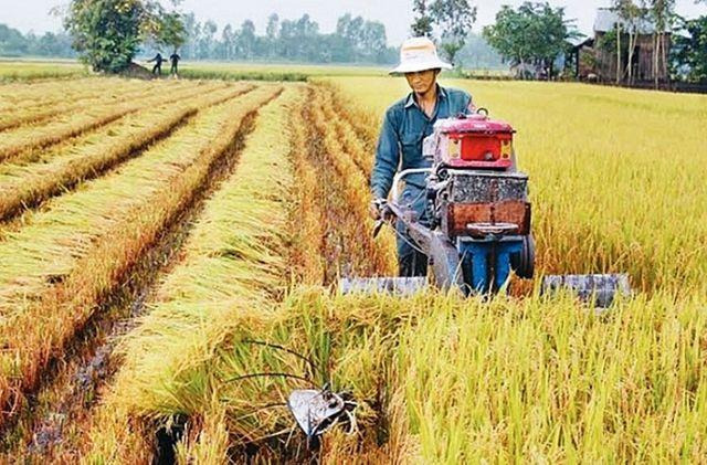 """Tăng trưởng thấp nhất 8 năm, sức ỳ của nông nghiệp vốn vẫn là chuyện """"cơm bữa"""" - 1"""