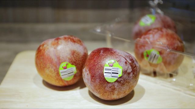 """Mận """"khủng long"""" nhập khẩu Úc to như quả đấm, chị em tranh nhau mua ăn để giảm cân - 3"""
