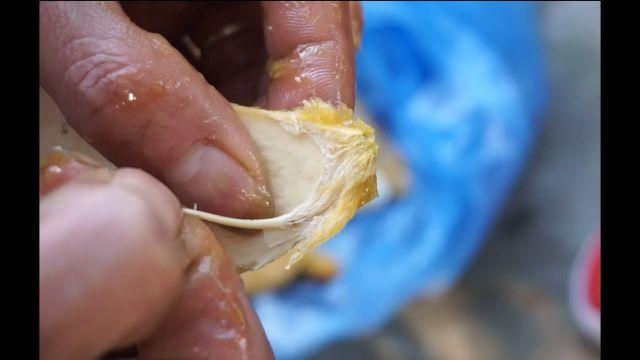 Dân Việt nhậu: Tôm hùm Trung Quốc nguy hại, bọ xít hôi khủng khiếp - 3