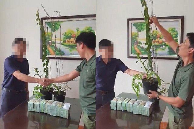 Dân Việt nhậu: Tôm hùm Trung Quốc nguy hại, bọ xít hôi khủng khiếp - 7