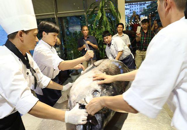 Đầu bếp Hà thành hì hục mổ cá ngừ vây xanh khủng, nặng 200kg - 2