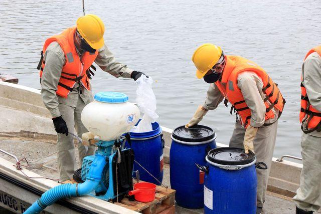 Chủ tịch Hà Nội yêu cầu thanh tra việc mua chế phẩm làm sạch ao hồ - 1