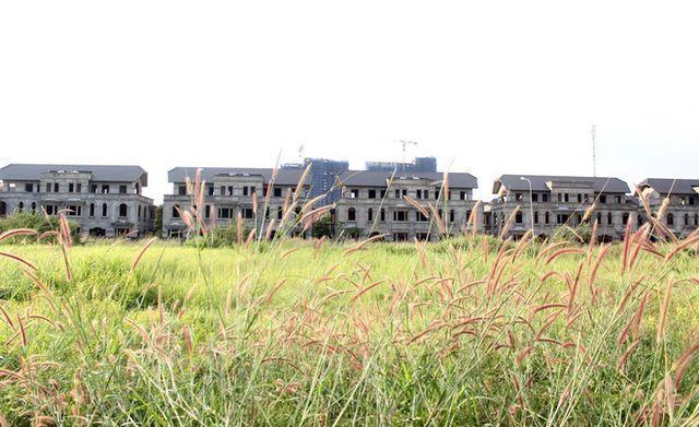 Khó xác định người Trung Quốc núp bóng mua đất; Dự án ma giăng bẫy nhà đầu tư đất nền - 3