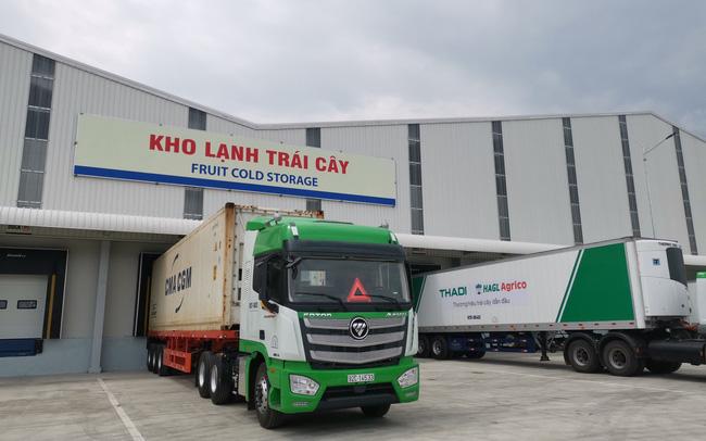 HAGL Agrico chuyển nhượng 100% vốn công ty con cho THACO