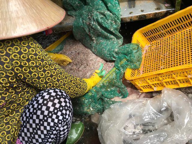 Nhiều người dân ở làng khô Phú Thọ không hiểu các thương lái thu mua vảy cá để làm gì, tuy nhiên với họ, bán được thứ bỏ đi này là có thêm chút thu nhập.