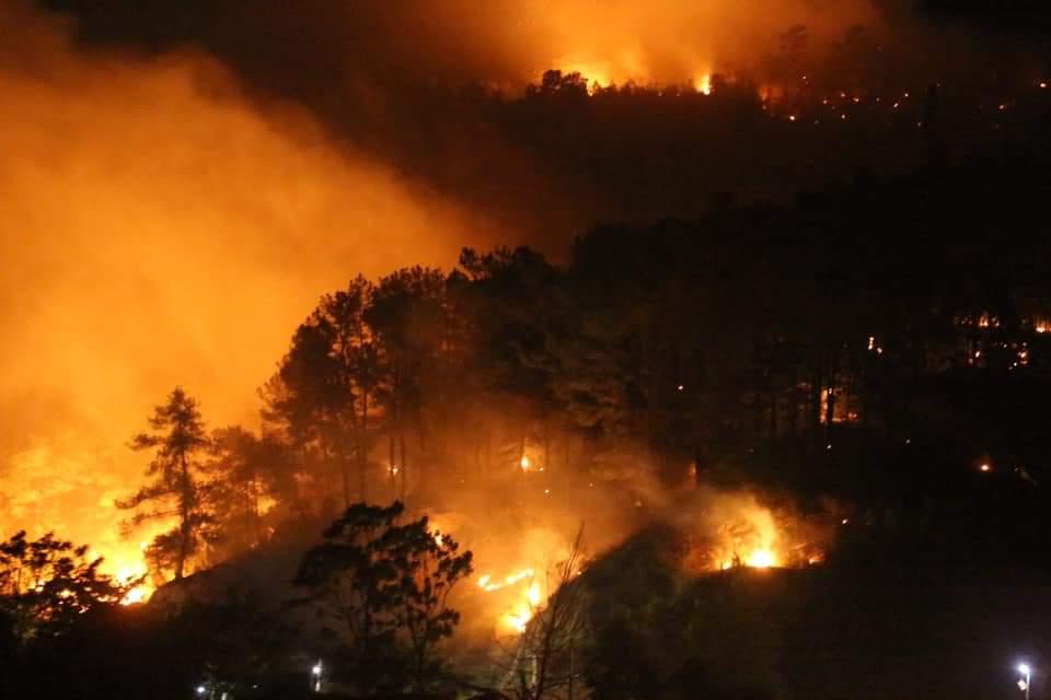 """Hà Tĩnh: EVN lo cháy rừng """"tái phát"""" đe doạ đường dây"""