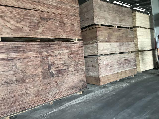 Hệ luỵ xưởng bóc mọc như nấm sau mưa: Chặn cầu tranh nhau từng xe gỗ - 5