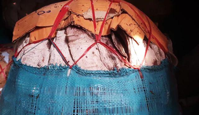 Mực khô của ngư dân Quảng Nam đã tìm được đầu ra