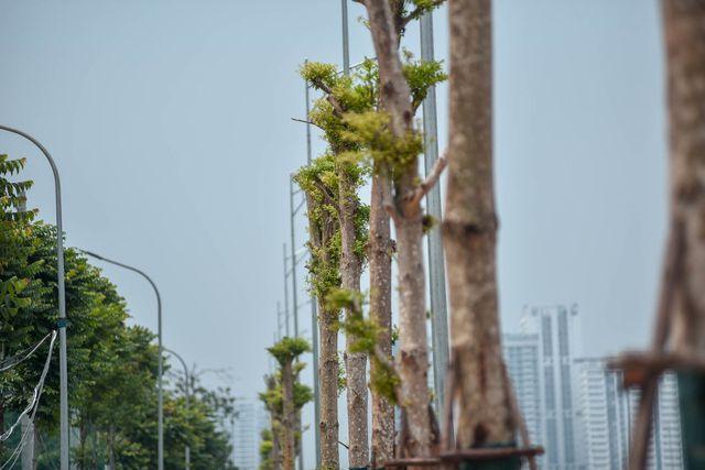 Đường 8 làn xe nối 3 quận nội thành Hà Nội - 10