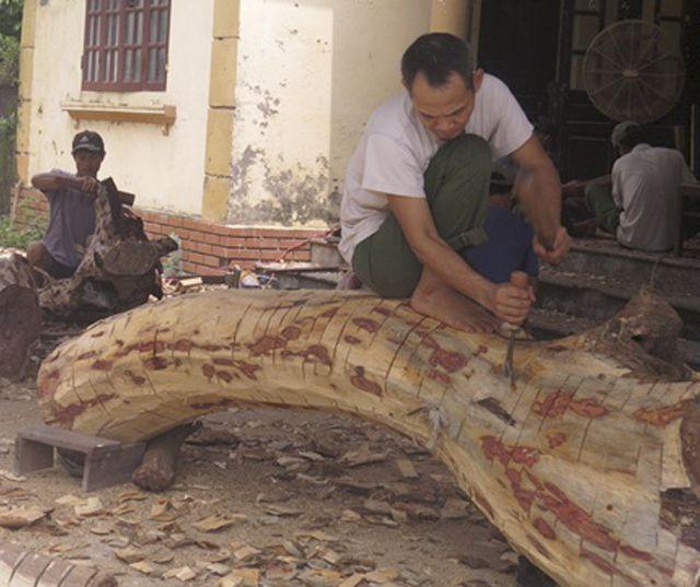Hà Nội: Số phận lô gỗ sưa trăm tỷ thôn Phụ Chính sắp được định đoạt - 3