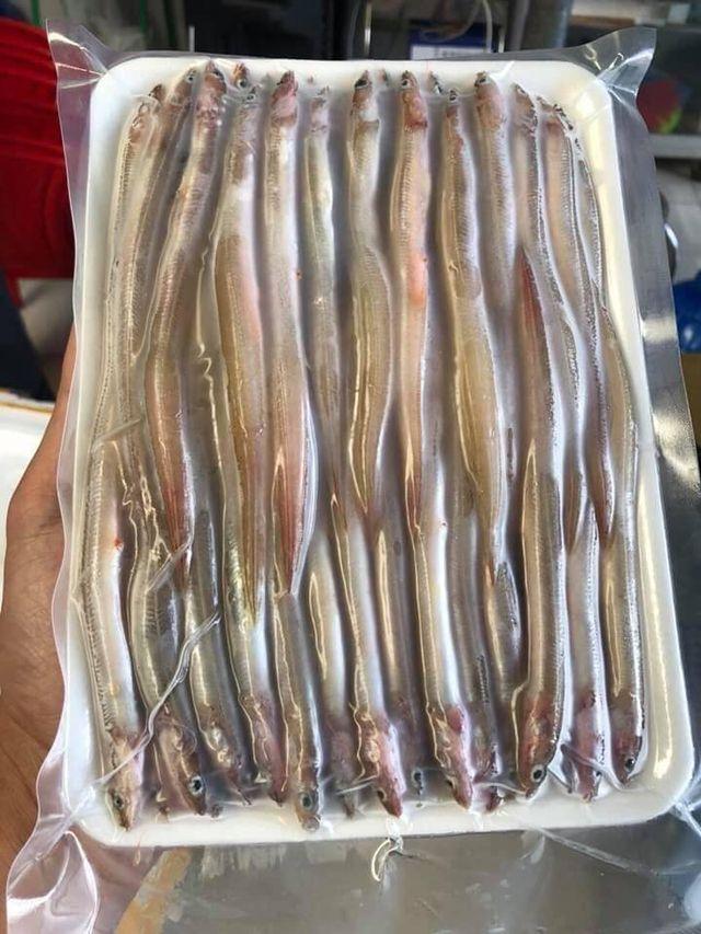 Kỳ lạ loại cá dài ngoằng như giun, ăn giòn rụm khiến dân Hà Thành phát sốt - 2